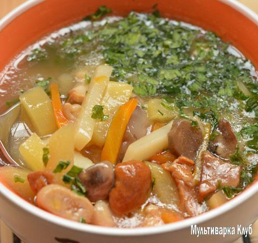 суп в мультиварке из замороженных опят